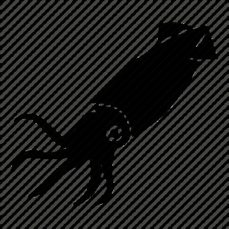 крыше картинка кальмара для вырезания можно использовать нижней
